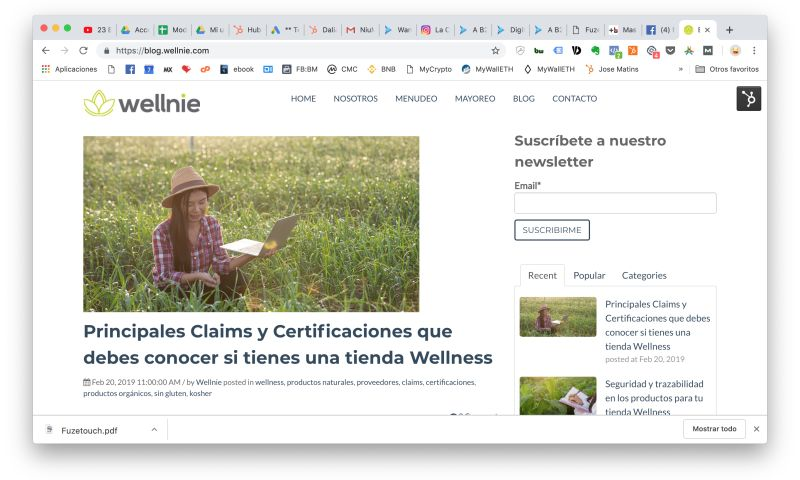 NiuMedia - Wellnie - Inbound Marketing