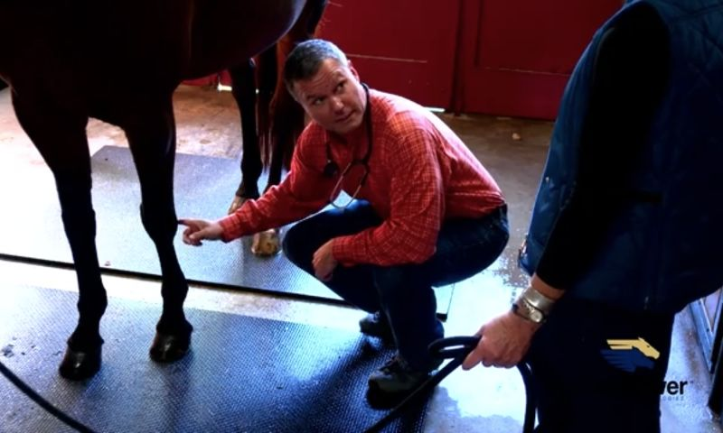 Boston Digital Productions - Horsepower