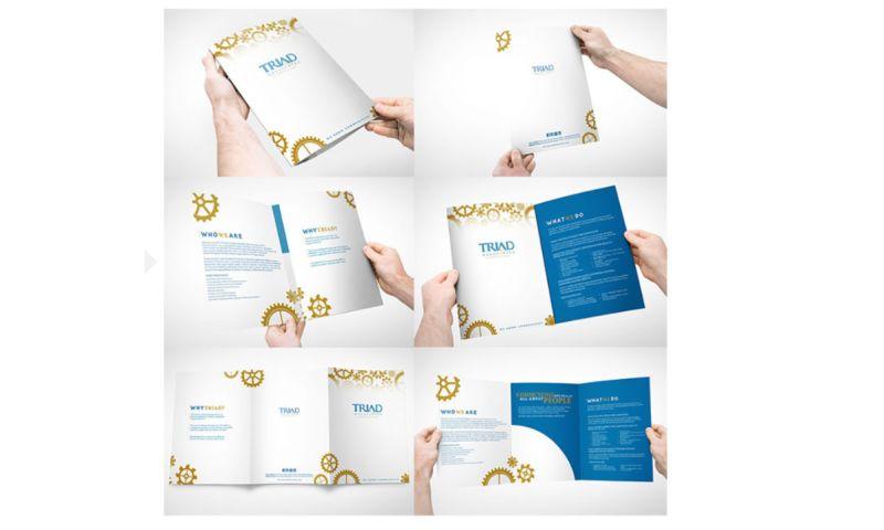 Elysium Marketing Group - Triad Associates Brochure
