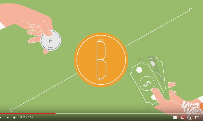Yum Yum Videos - Cointree - Motion Graphics Explainer Video