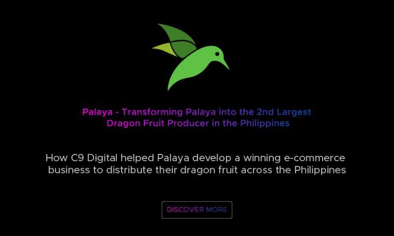 C9 Digital - C9 Digital Case Study - Palaya Natural Farm