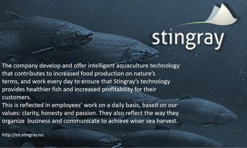 Vector Software - Stingray