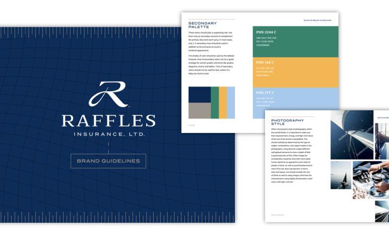 Rule29 - Raffles Insurance