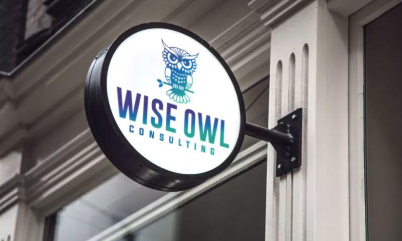 Elegant Image Studios, Inc. - Wise Owl Consulting