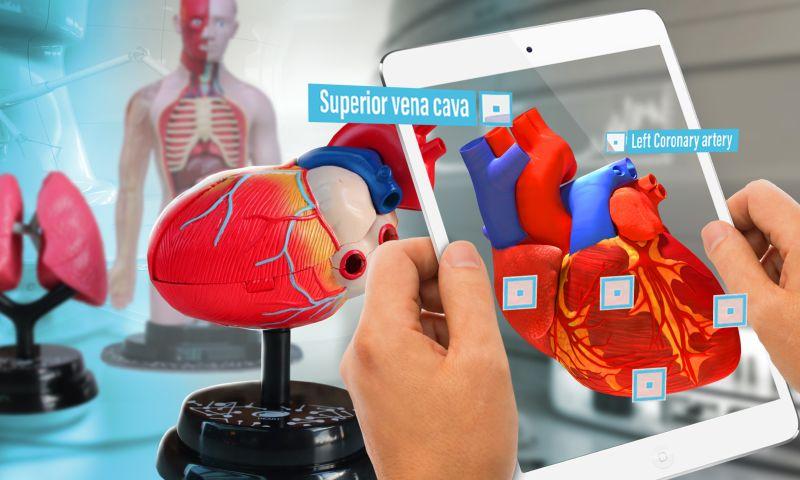 DEVAR - Eastcolight Human Anatomy Toys with AR