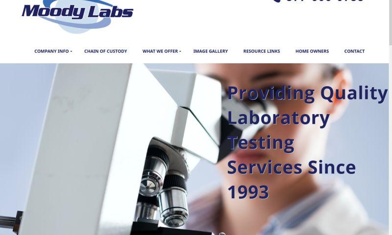Einstien's Eyes Online Marketing - Moody Labs