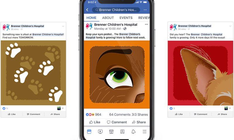 Wildfire - Brenner Children's Hospital Social