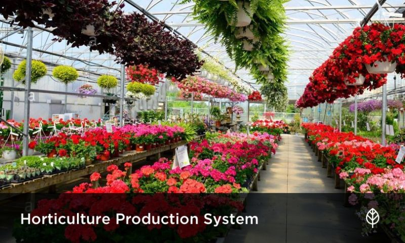 Velvetech LLC - Digital Transformation of Wholesale Flower Company
