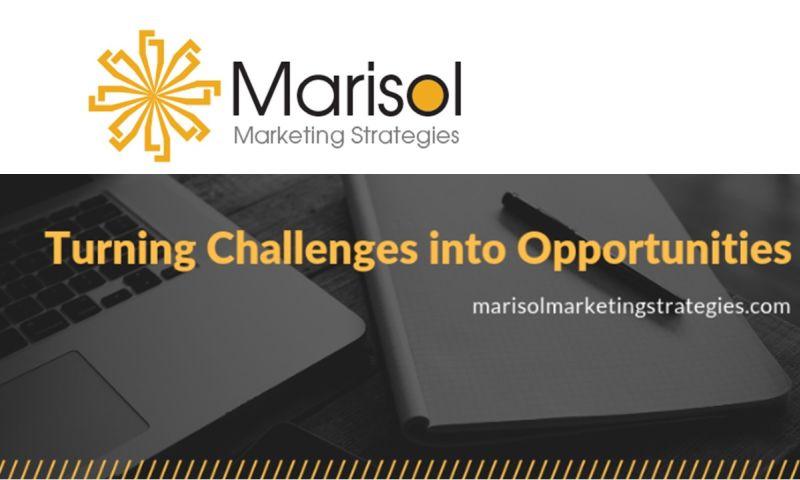 Marisol Marketing Strategies LLC - What we do.