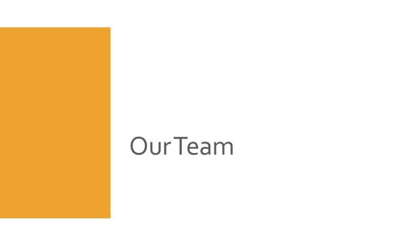 Marisol Marketing Strategies LLC - My Team