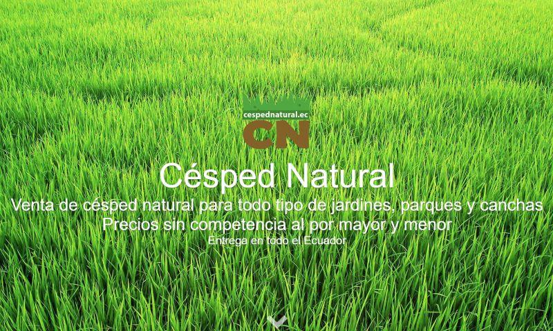eaweb - Césped Natural