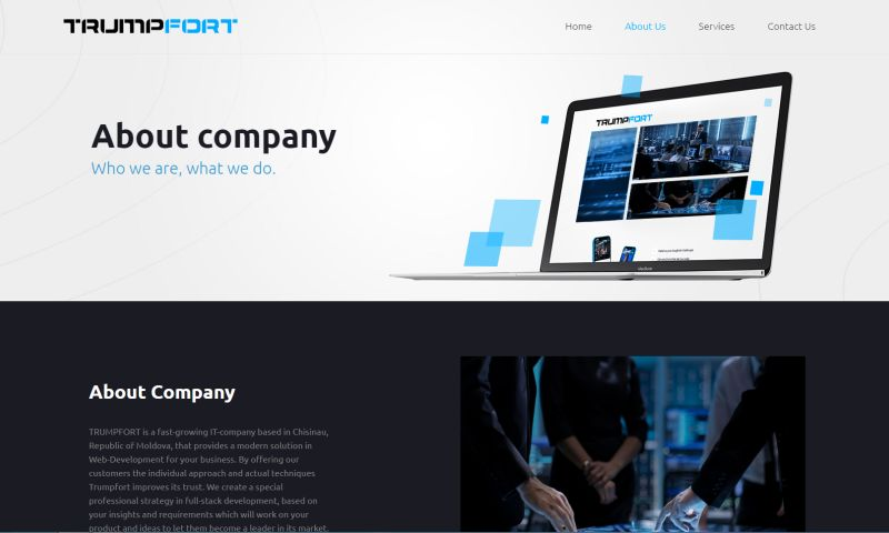 Wowlogic - Website for IT Company