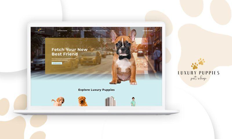 MAXBURST, Inc. - Luxury Puppies
