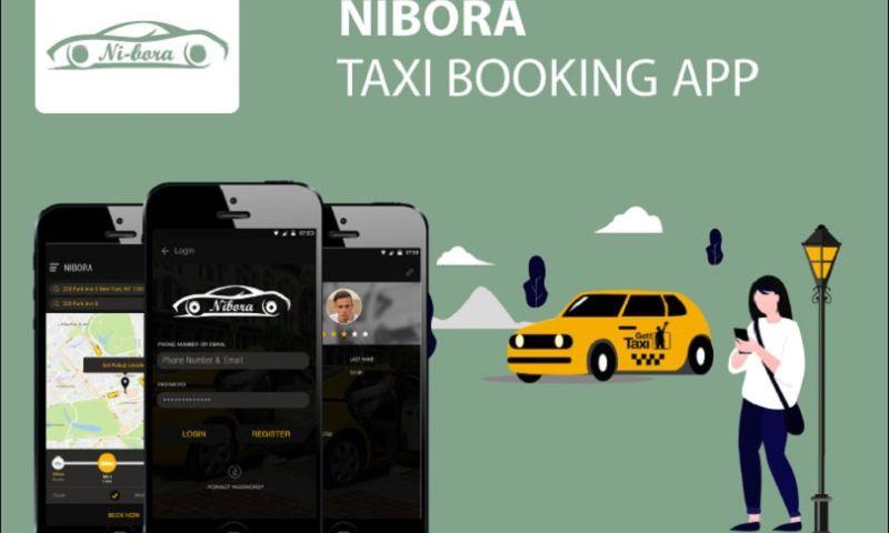 Endive Software - Nibora - Taxi App Development Services