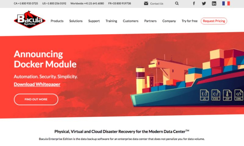 """Special Case - CORPORATE WORDPRESS WEBSITE FOR """"BACULA SYSTEMS"""""""