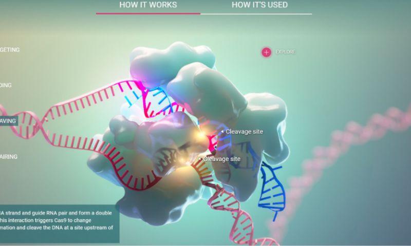 AXS Studio - CRISPR-Cas9 Interactive Application