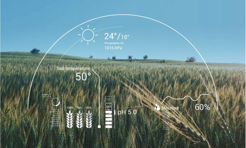 Dividato - Crop yield prediction