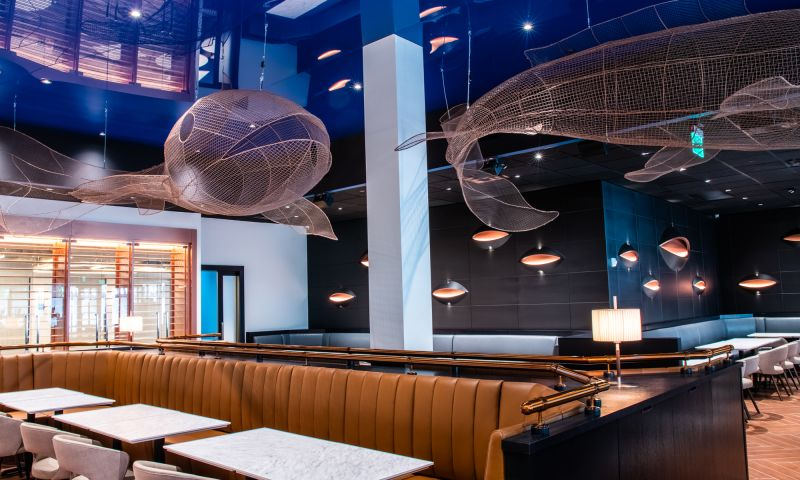 Into the Blue Agency - Cooperfish Kitchen