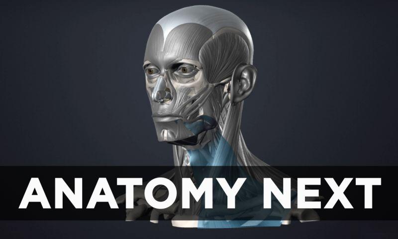 VironIT - AnatomyNext