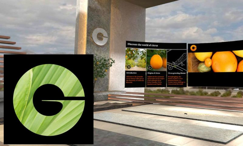 Groove Jones - Givaudan Virtual TasteTrek® Citrus – VR Tool for Citrus Flavour Creation