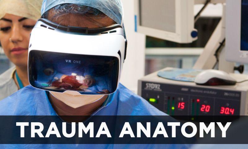 VironIT - Trauma Anatomy
