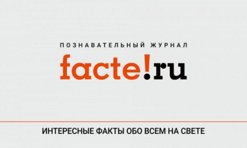 Clever Marketing - Targeting on Facebook for online magazine Facte.ru