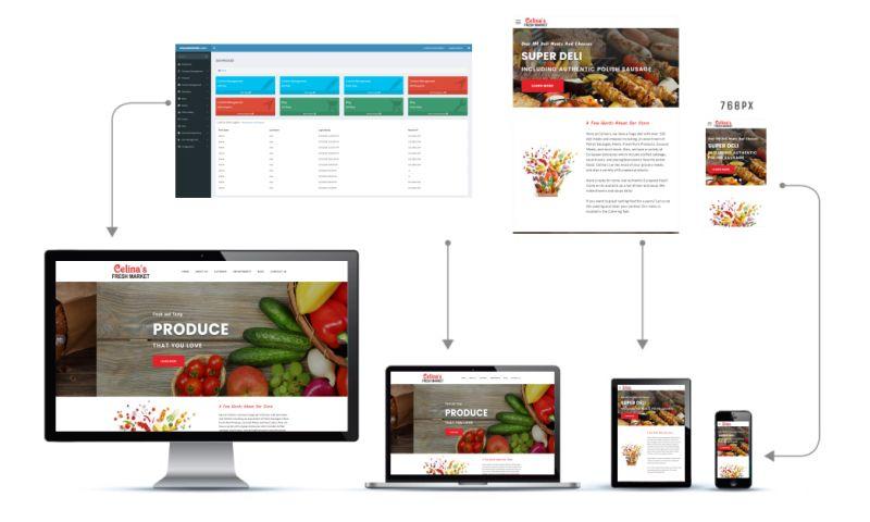 Visualwebsite.com - Custom Content Management System
