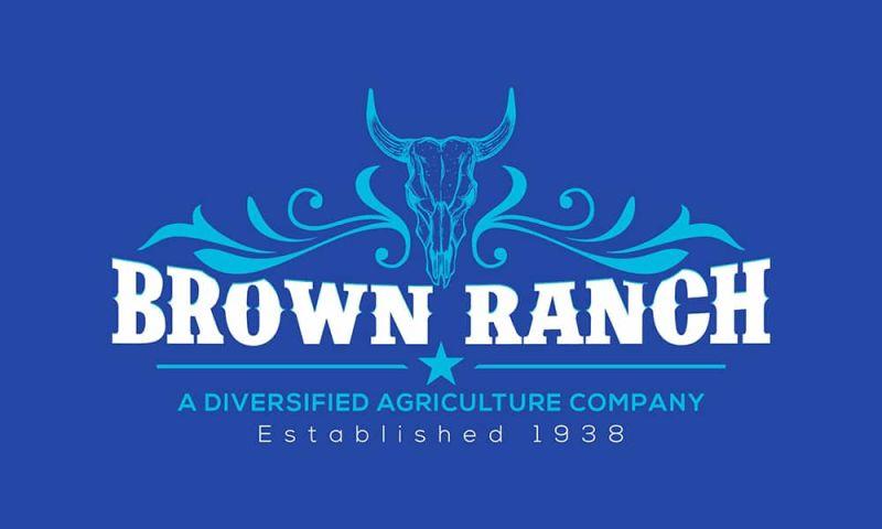 Techxide - Brown Ranch