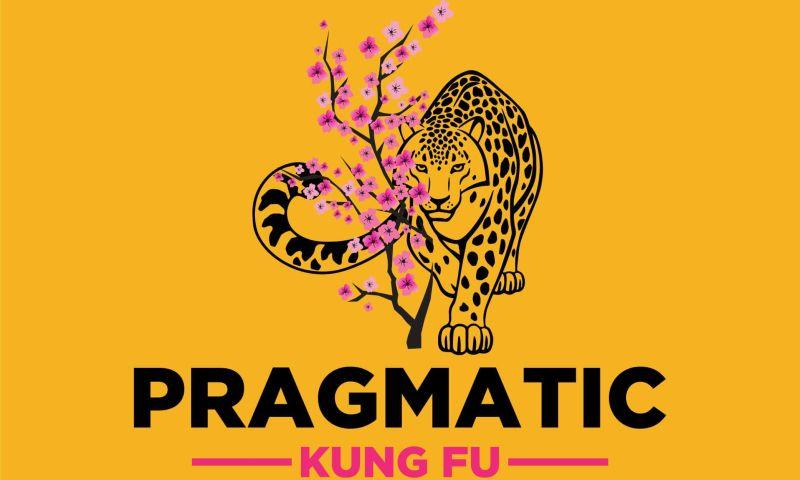 Techxide - Pragmatic Kung Fu