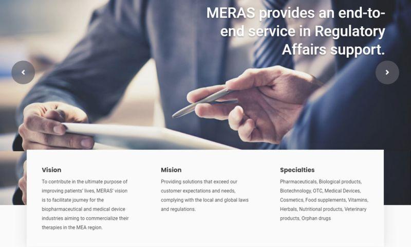 Dot IT - MERAS Consulting Website