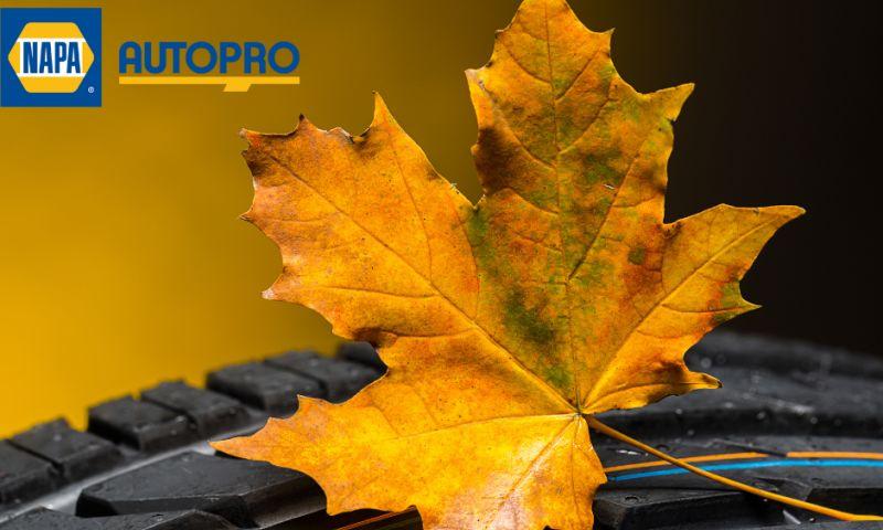 Blink Digital Consulting - Kirkham Autopro