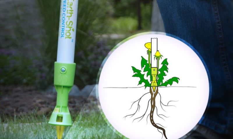 Auell Consulting - Innovative Weed Killing Solution