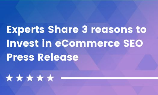 Experts Share 3 Reasons to Invest in eCommerce SEO [DesignRush QuickSights]