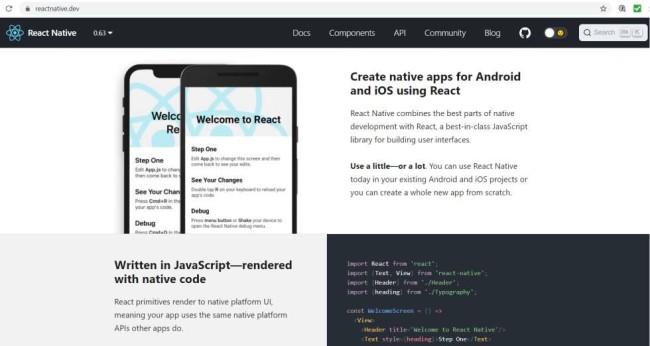 Hybrid Mobile app developer