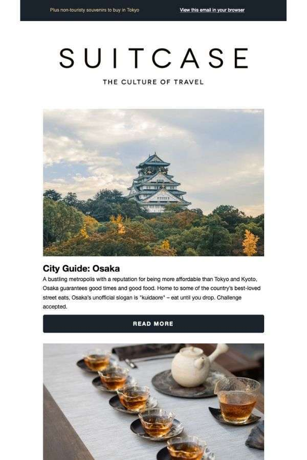 newsletter email campaign examples: Suitcase
