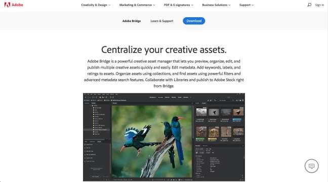 photo management software: screenshot of Adobe Bridge homepage