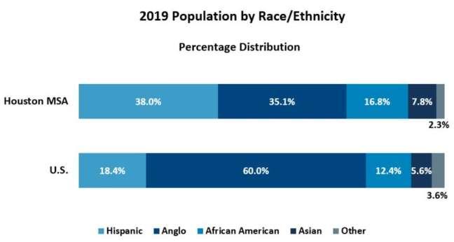 2019 population by race/ethnicity