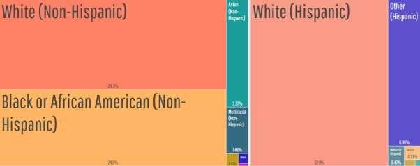 Dallas web development agencies: Dallas' biggest ethnic groups