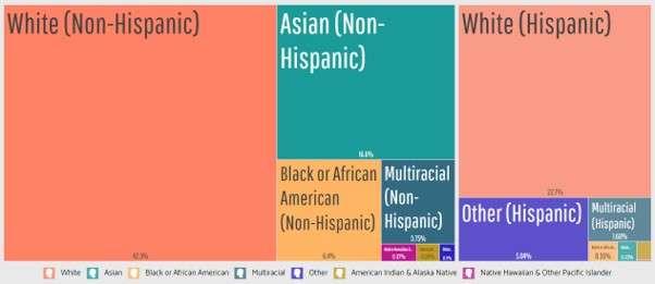 San Diego web development companies: Spoken languages in San Diego