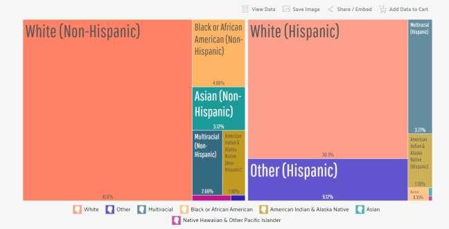 Tucson seo company: ethnic groups in Tucson