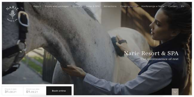 Narie Resort & Spa Travel Website Design