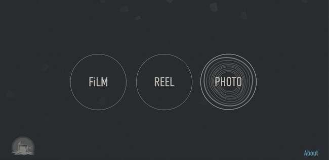 Belward Tree Film Production Company Websites