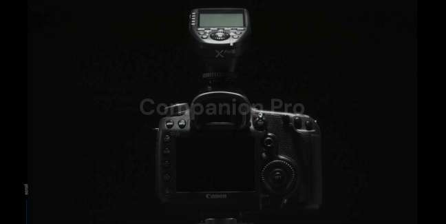 Neoluma Companion Pro Photography Portfolio Websites