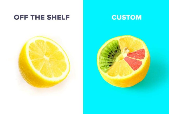 Off the shelf vs. Custom software development