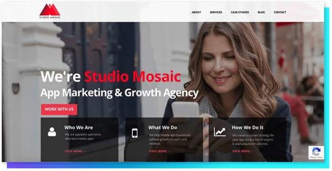 Studio Mosaic_DesignRush Digital Agency Directory