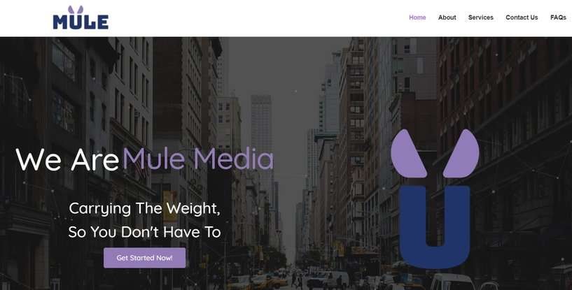 Mule-Media-Web-Design-Agency