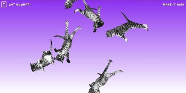 useless websites: Cat Bounce