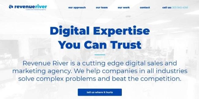 Denver web design companies: Revenue River