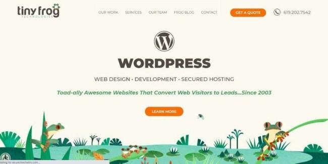 San Diego website design companies: TinyFrog Technologies
