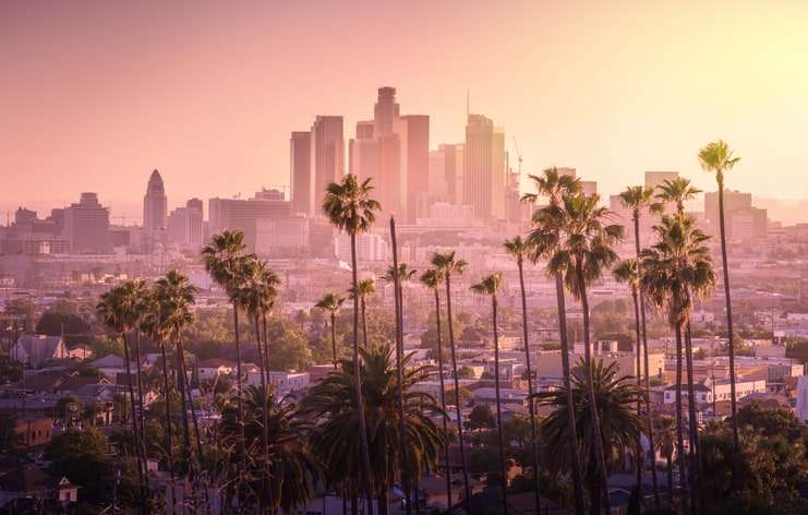 Los Angeles graphic design firms: Los Angeles skyline with palm trees